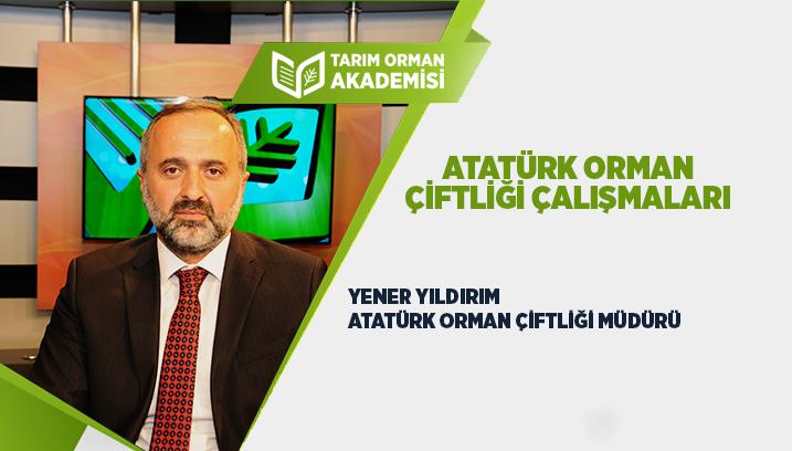 Atatürk Orman Çiftliği Çalışmaları