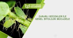 Zararlı Böcekler İle Genel Biyolojik Mücadele