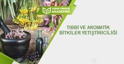Tıbbi ve Aromatik Bitkiler Yetiştiriciliği
